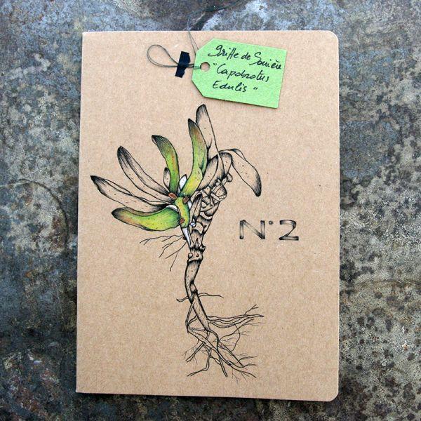Carnet-notebook botanique A5 - Dessin griffes de sorcière