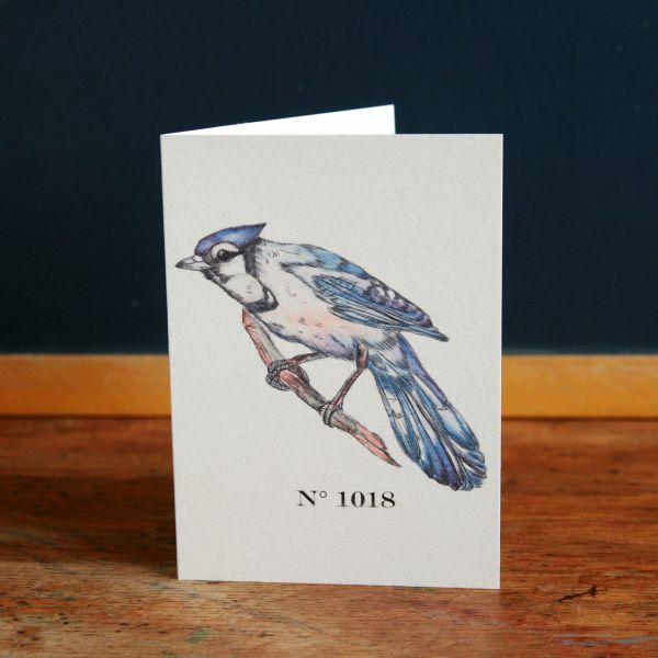 Carte double-Geai Bleu
